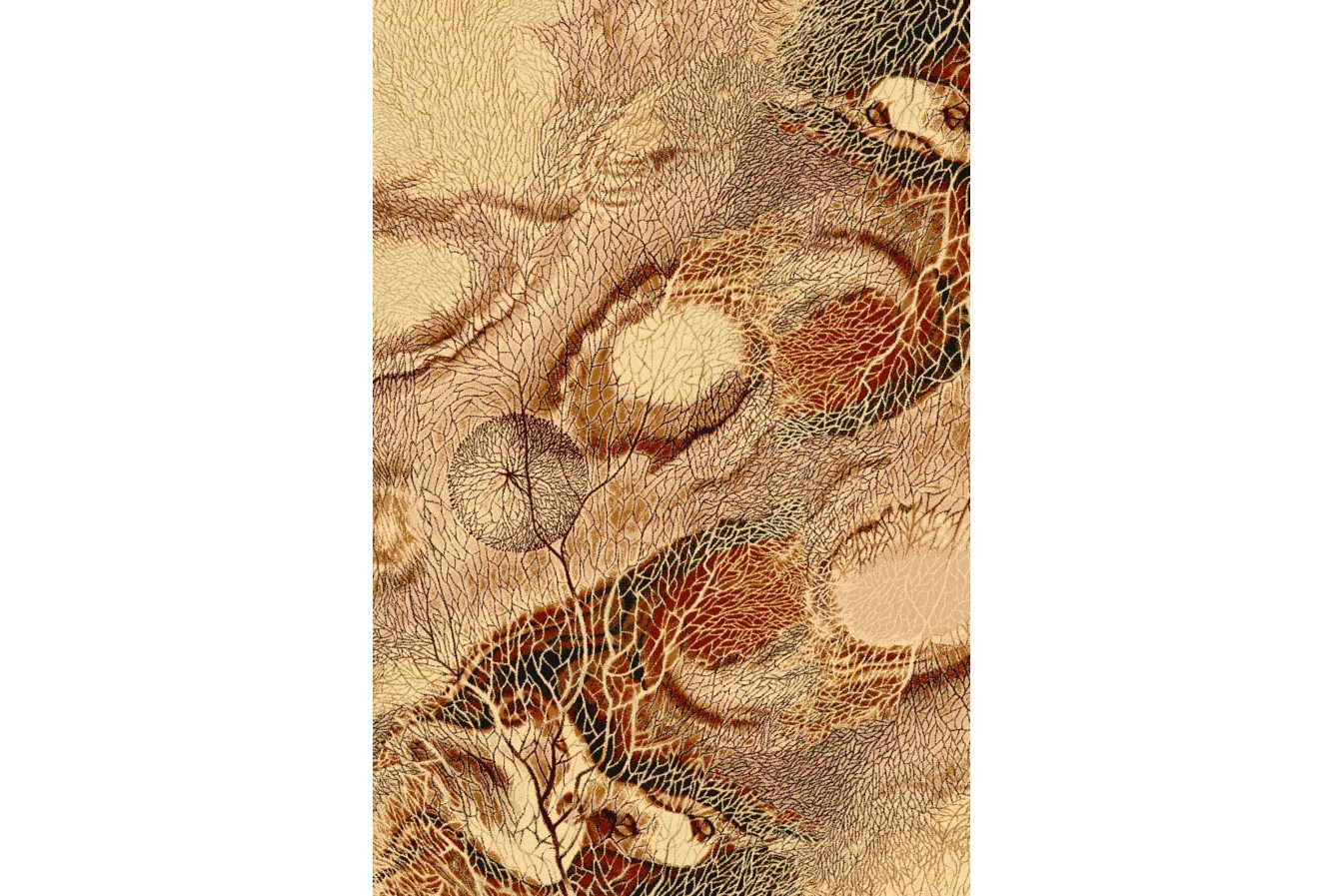 Wyrafinowany Nowoczesny Dywan Agnella Isfahan Bellona Bursztyn